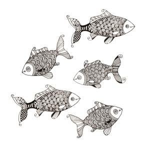 Fish_2014-08-19